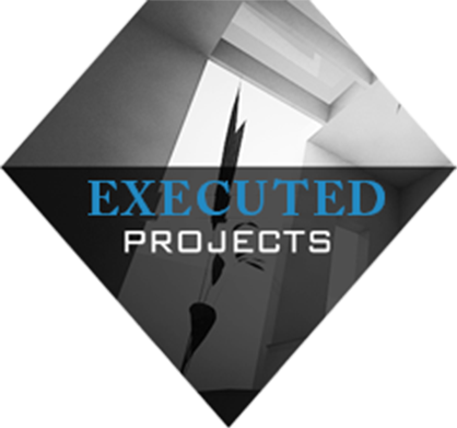 Executed Projects